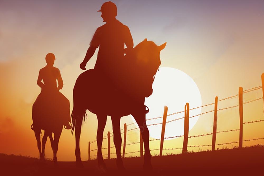 Escursione a cavallo in pineta